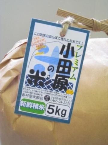 プレミアム 小田原の米 5Kg