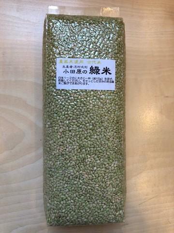 小田原の緑米(農薬未使用)1kg