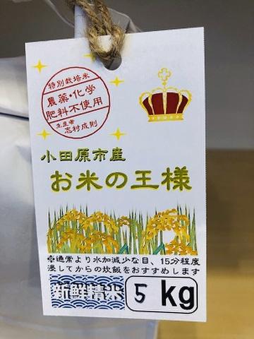 農薬化学肥料不使用 小田原市産 お米の王様 いのちの壱 5kg
