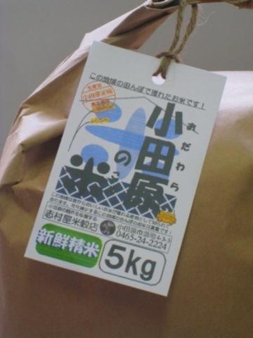小田原の米(キヌヒカリ) 5kg