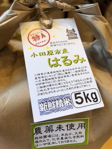 《新米》農薬不使用 祝特Aはるみ(小田原の米)5kg