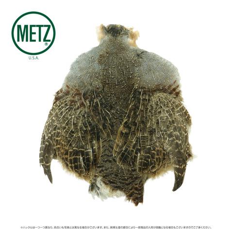 ハンガリアン パートリッジスキン     METZ #1