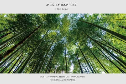 『MOSTLY BAMBOO』 阪東 幸成 著  ふらい人書房
