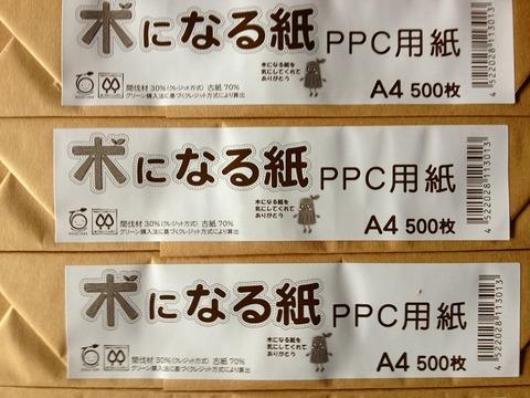 木になる紙 A4 500枚入り