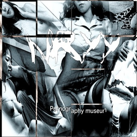NRYY/Pornography museum(solo)