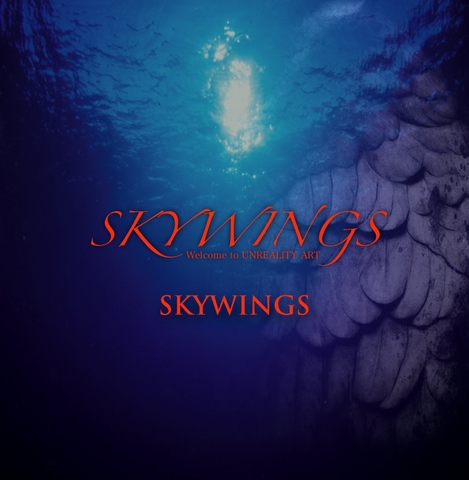 シングルCD「SKYWINGS」Type-B