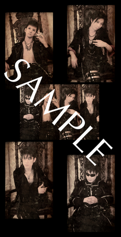 SKYWINGS 2015 PHOTO SET TYPE-VAMPIRE