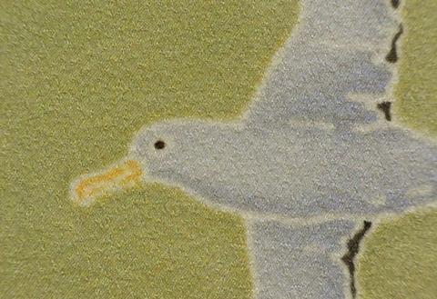正絹インチ額絵「アホウドリ」