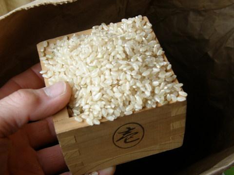 無農薬うるち米(白米3キロ)