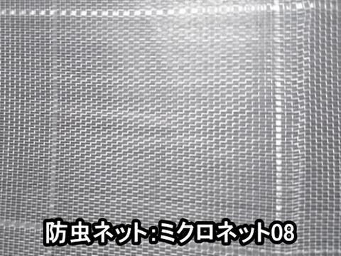 防虫ネット:ミクロネット08ー150cm幅×1m単位 長さカット