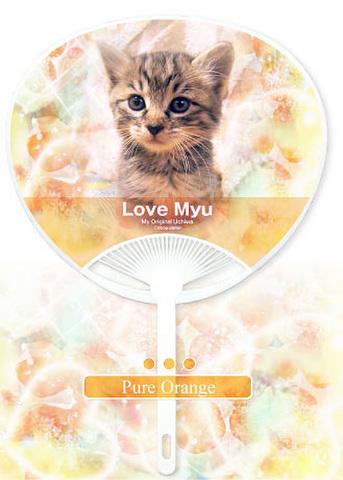 ピュアオレンジ(両面同じ写真)