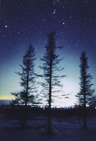 「星空の下の街灯り」ポストカード
