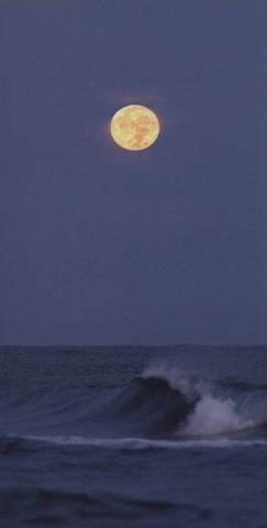 「日本海に沈んでゆく満月」ポストカード(大判)