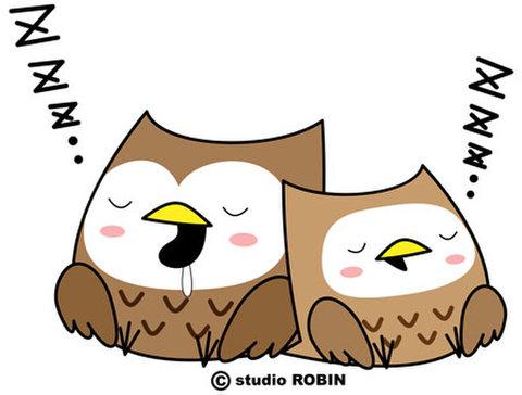 ★フクロウ親子B★BIR-019
