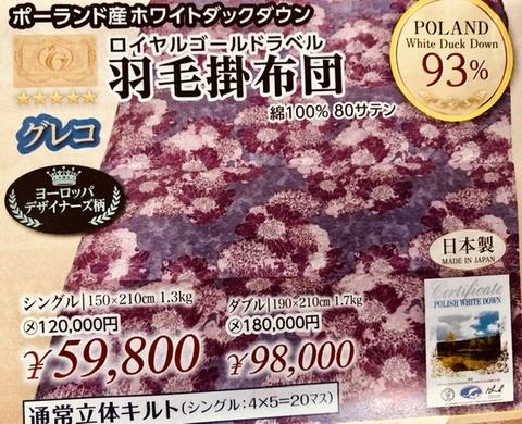 羽毛布団ポーリッシュホワイトダウン90%1.3kg