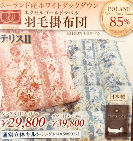 テリスⅡ羽毛布団ポーランド産ホワイトダックダウン85%