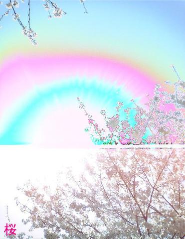桜 ミニサイズ