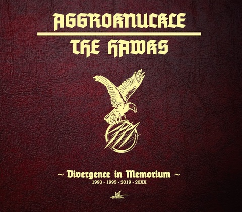 "AGGROKNUCKLE x THE HAWKS ""Divergence in Memorium"" CD"