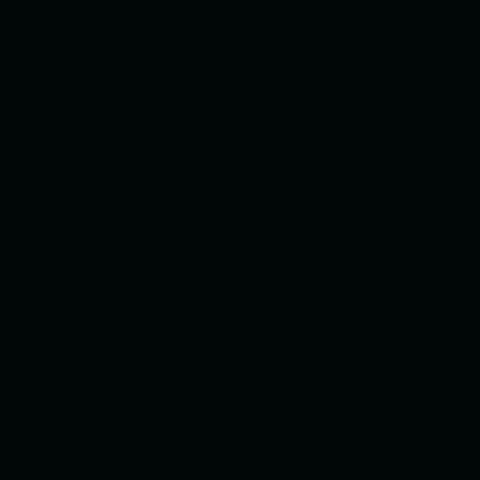 ねぷた(ねぶた)染料 10g 黒