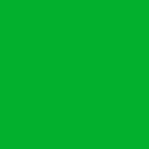 ねぷた(ねぶた)染料 10g 黄口緑