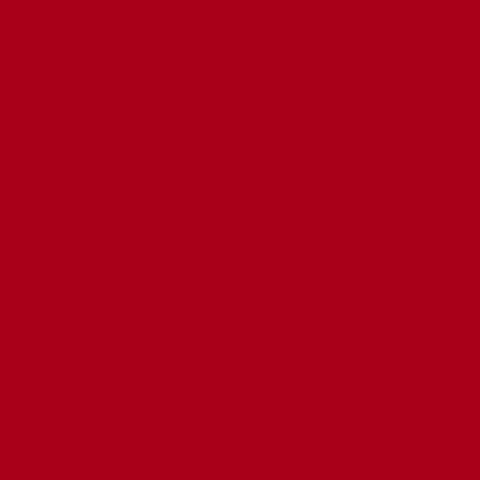 ねぷた(ねぶた)染料 10g 赤