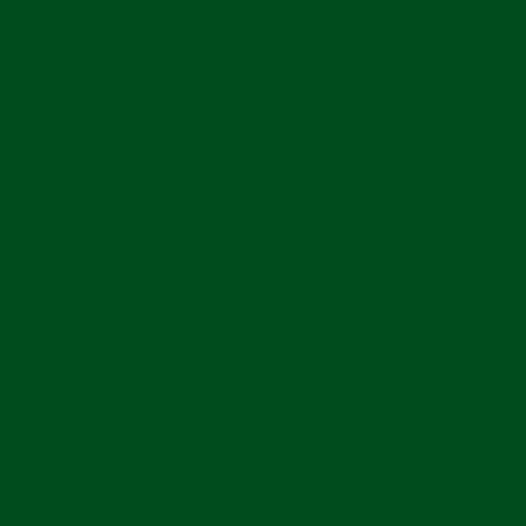 ねぷた(ねぶた)染料 10g 緑