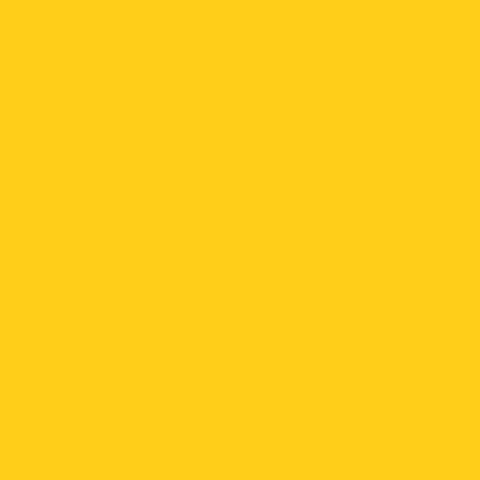 ねぷた(ねぶた)染料 10g 黄