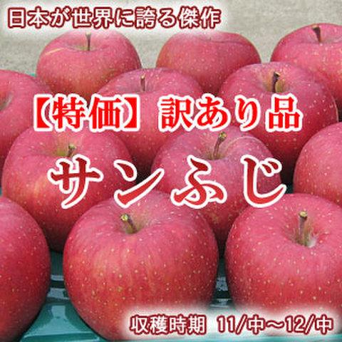 【訳あり】サンふじ 10Kg