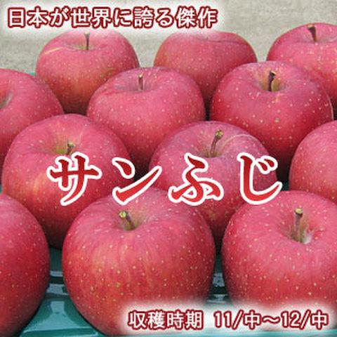 【超特価】サンふじ 小玉 10Kg(約40~46玉)