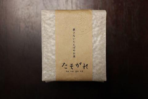 ササニシキCUBE玄米
