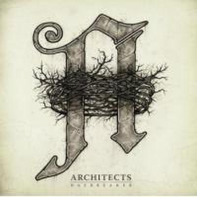 Architects/DAYBREAKER