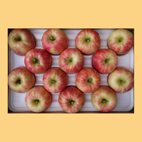 りんごシナノドルチェ贈答品15kg箱