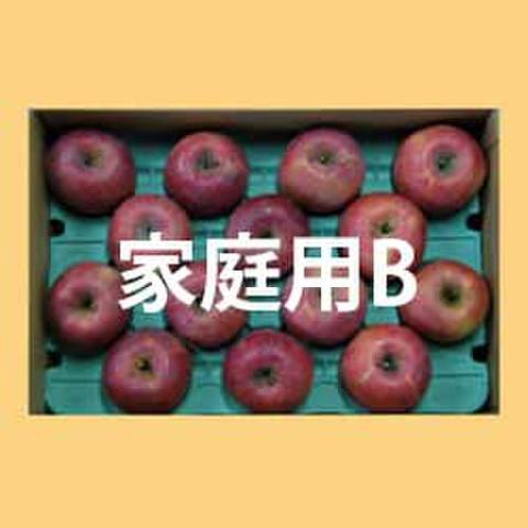 りんごサンふじ家庭用B級品15kg箱