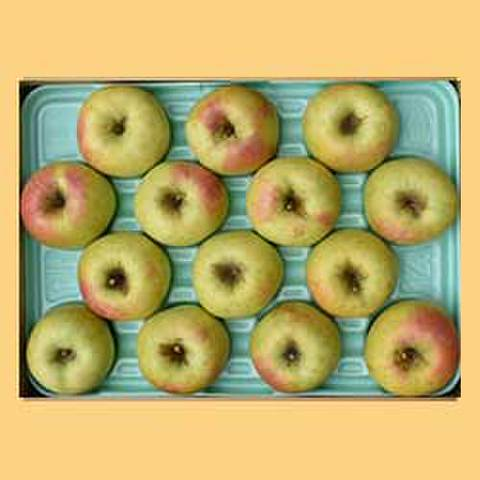 りんごぐんま名月贈答品5kg箱