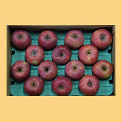 りんごサンふじ贈答品15kg箱
