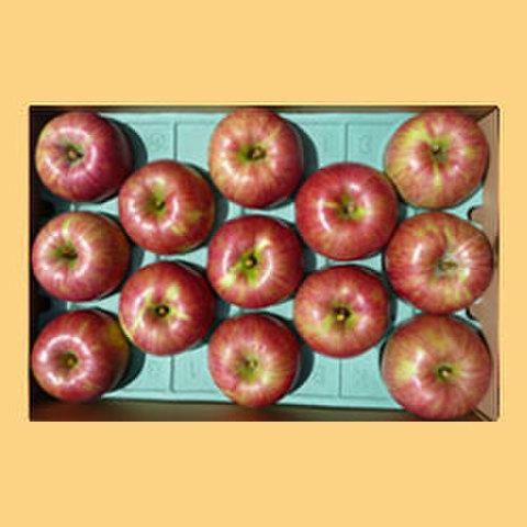 りんごサンつがる贈答品10kg箱