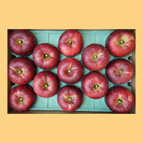りんご秋映贈答品15kg箱