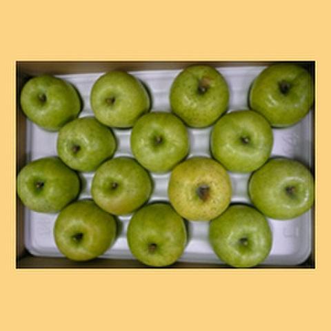 りんご王林贈答品15kg箱