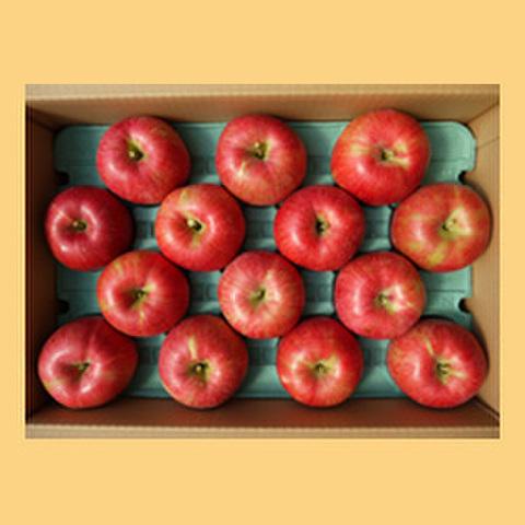 りんごシナノスイート贈答品15kg箱