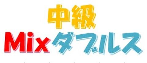 2019.02.03(日)ミックスダブルス中級