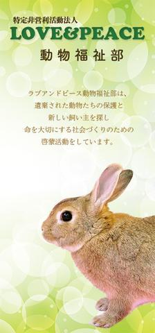 LOVE&PEACE 動物福祉部リーフレット