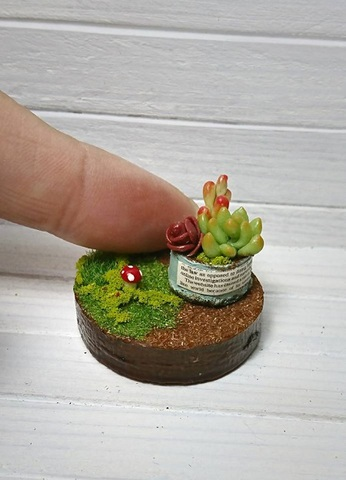 小さなお庭と多肉ちゃん寄せ植え*ブリキ