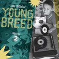 V.A/YOUNG BREED VOL.2(2CD)