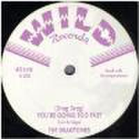 "DRAGTONES/(Drag Drag)You're Going Too Fast(7"")"