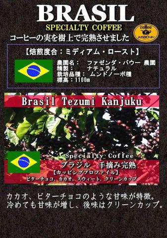 手摘み樹上完熟(ファゼンダ・バウー農園) 200g