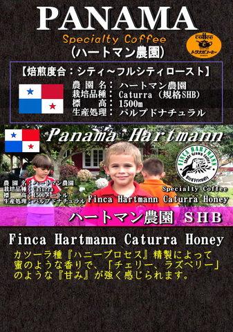 パナマ ハートマン農園 200g