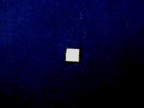 シニール1.5inch角形「・」オフ白/オフ白/- ランクB