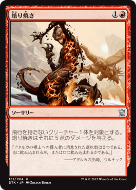 焙り焼き/Roast/DTK-151/U/赤