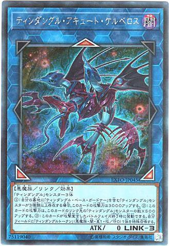 ティンダングル・アキュート・ケルベロス (Secret/EXFO-JP045)