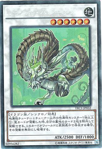 ナチュル・パルキオン (Collectors/TRC1-JP032)⑦S/地6